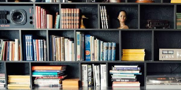 A big shelf where books are arranged along with few show pieces.